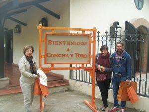 Tour Vinicola Concha y Toro e Tour Vinicola Undurraga