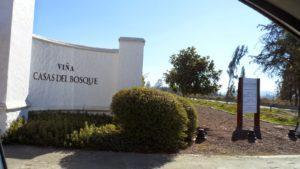 Vinícola Casas del Bosque, Tour Casas del Bosque